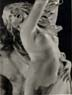 Bernini_Apollo_and_Daphne_detail